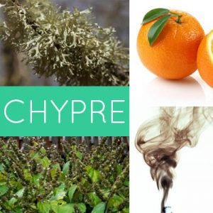 Custom Chypre Perfume